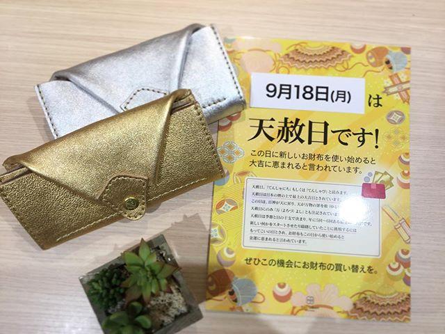革財布・革バッグ・kissora.皆様は新しいお財布を使い始めると大吉に恵まれる日【天赦日】があるのはご存知ですかそれが今月9月18日(月)なんですこの日から使い始めると金運に恵まれたりとすごく縁起の良い日です️是非これを機にお財布を買い替えてはいかがでしょうか.(写真商品)ラウンドファスナー財布¥15000+tax.#kissora #キソラ #kissora_official #財布 #天赦日 #買い替え #金運 #縁起の良い日 #特別な日 #大吉 #横浜ジョイナス #横浜 #横浜線 #町田 #みなとみらい #新調